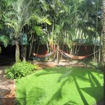 Hammocks in the Gardens