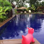 The Pool and Palm Villa resmi