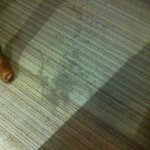 stains on hall carpet