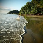 Foto Cape Tribulation Beach House