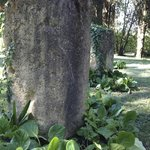 Etruscan Stones tell a tale in Storygardenz