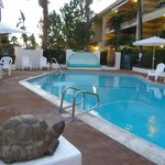 Foto de Hotel Pepper Tree