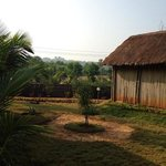 Фотография Bamboo House Goa