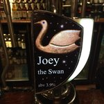 'Joey the Swan' local ale
