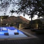 Shepherd's Tree Game Lodge resmi