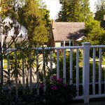 Foto de Mornington Rose Bed and Breakfast