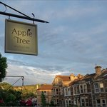 Apple Tree, Bath