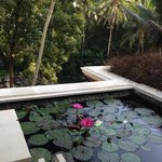 صورة فوتوغرافية لـ ‪Four Seasons Resort Bali at Sayan‬
