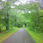 Ridgeland Bike Trail