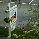 Foto di Ogunquit Beach Inn