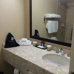 Foto van Embassy Suites Indianapolis North