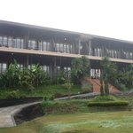 Green Forest Resort resmi