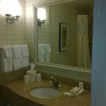 Φωτογραφία: Hilton Garden Inn Great Falls