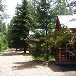 Photo de Silverwolf Log Chalet Resort