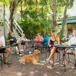 Old Town Manor is located in the heart of Old Town Key West, only half a block from Duval Street