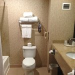Foto van Holiday Inn Express Hotel & Suites Roseville-Galleria Area