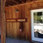 Squirrel House -- Awesome rooms!!