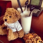 Teddy bear and evening milk
