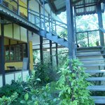 Jacaranda Hotel and Jungle Garden의 사진