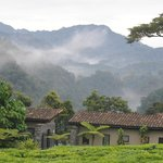 Foto de Nyungwe Forest Lodge
