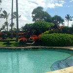 Pool at the Kauai Beach Resort next door
