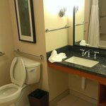 Doubletree Suites by Hilton Hotel & Conference Center Chicago / Downers Grove Foto