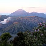 Foto Yoschis Mount Bromo View