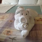 we enjoyed the towel art!