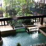 Beautiful Hyatt from Lobby