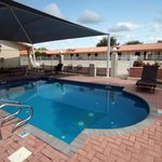Φωτογραφία: Edinburg Executive Inn