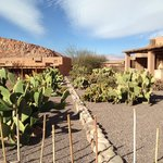 Photo de Alto Atacama Desert Lodge & Spa