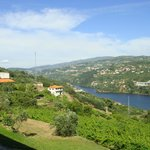 Фотография Douro Palace Hotel Resort & Spa