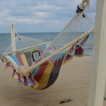 Relax on a Hammock on the Beach!