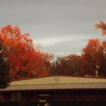 Fall pictures at Jellystone Park at Whispering Pines, Tyler