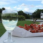 Photo de Kaikoura Top 10 Holiday Park