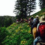 Our company enjoying our trail ride at Dry Ridge Outfitters