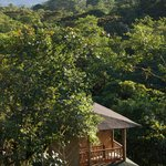 San Jorge Eco-Lodge & Botanical Reserve照片