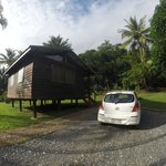 Daintree Rainforest Bungalows照片