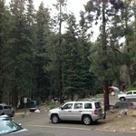 Lodgepole Campground resmi