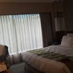 Φωτογραφία: Holiday Inn Singapore Orchard City Centre