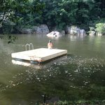 Floating dock on Macal River