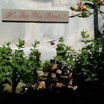 The Stone Hedge Bed and Breakfast resmi