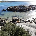 Bay of Fires Character Cottages resmi