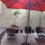 I enjoyed my coffee in this lovely courtyard each morning at Casa Colonia.