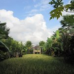 Photo of Bebek Tepi Sawah Villas & Spa