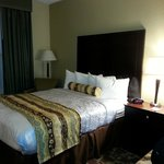 صورة فوتوغرافية لـ ‪BEST WESTERN PLUS Hobby Airport Inn & Suites‬