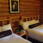 Togwotee Mountain Lodge resmi