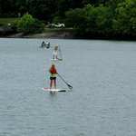 paddle board on the lake