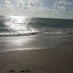 On the Beach- Casey Key resmi