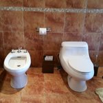 Bidet and toliet